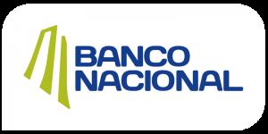 bnLOGO BLANCO